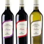 """Nuove etichette per i nostri vini """"linea natura"""""""