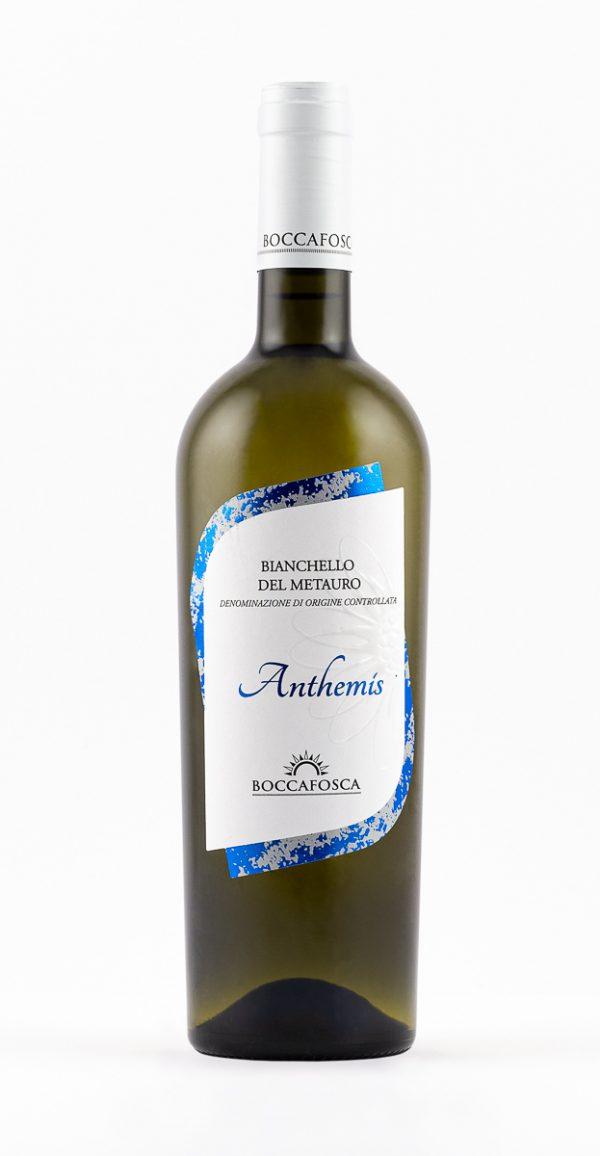 Anthemis Bianchello del Metuaro
